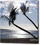Silhouetted Palm Trees On Maui Beach Canvas Print