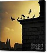 Silhouettes Of The Cormorants Canvas Print
