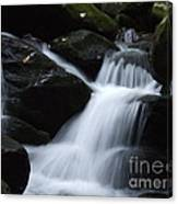 Silky Waterfall Canvas Print