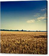 Silo In Wheat Canvas Print