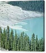 1m3531-silt Entering Peyto Lake Canvas Print