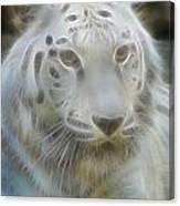 Silver-7988-fractal Canvas Print
