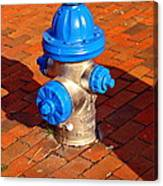 Silver And Blue Hydrant Canvas Print