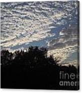 Silver Clouds Canvas Print