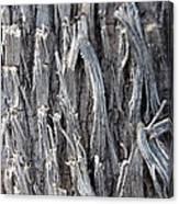 Silver Heavy Metal  Canvas Print