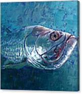 Silver King Tarpon Canvas Print