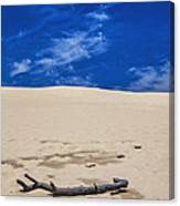 Silver Lake Dune With Dead Tree Branch And Cirrus Clouds Canvas Print