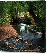 Silver River Channel In Autumn Canvas Print