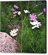 Simple Flowers 11460 Canvas Print