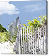 Simplified View Of Coastal Dune Canvas Print