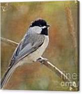 Simply Chickadee II Canvas Print
