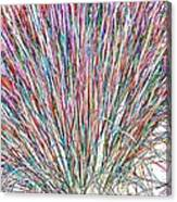 Simply Grass 2 Canvas Print