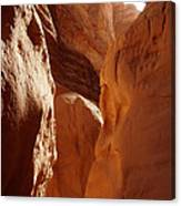 Sinai Desert  Canyon Region  Walking Path Egypt Canvas Print