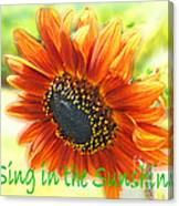 Sing In The Sunshine Canvas Print