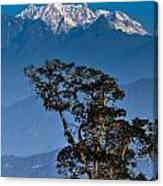 Singalila Ridge Sikkim Canvas Print