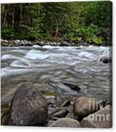 Singing Creek Canvas Print