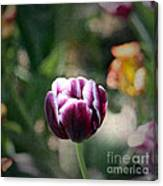 Single Bloom Canvas Print
