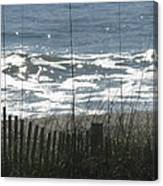 Single Dune Fence Canvas Print