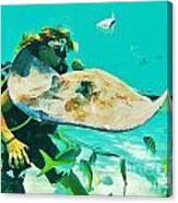 Singray City Cayman Islands Four Canvas Print