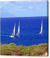Sint Maarten Regatta Canvas Print