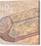 Sioc2 Canvas Print