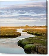 Sippewissett Marsh Canvas Print
