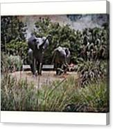 Sitting By The Elephants Canvas Print