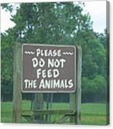 Six Flags Great Adventure - Animal Park - 121218 Canvas Print