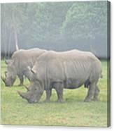 Six Flags Great Adventure - Animal Park - 121219 Canvas Print