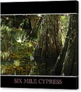 Six Mile Cypress Fort Myers Florida Canvas Print