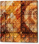 Six Sigma Canvas Print