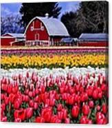 Skagit Valley Canvas Print