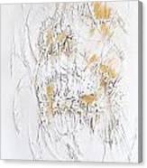 Skeleton 652 - Marucii Canvas Print
