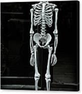Skeleton New York City Canvas Print