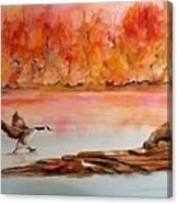 Skid Canvas Print