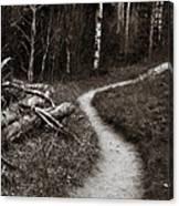 Skinny Trails Canvas Print