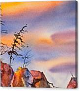Skinny Trees Windy Day Canvas Print