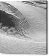 Skn 1417 Leaf Pattern Canvas Print