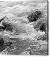 Skc 0212 Facing The Tide Canvas Print