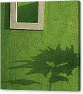 Skc 0682 Nature In Shadow Canvas Print