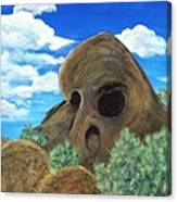 Skull Rock Canvas Print