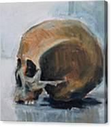 Skull Torso Canvas Print