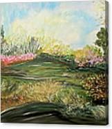 Sky Dazzle Canvas Print