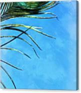 Sky Flight Canvas Print