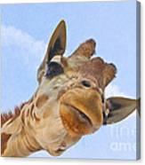 Sky High Giraffe Canvas Print