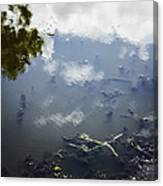 Sky Reflections Canvas Print