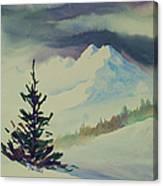 Sky Shadows And Spruce Canvas Print