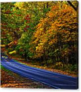 Skyline Drive 2 Canvas Print