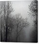 Skyline Drive In Fog Canvas Print
