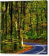 Skyline Drive Canvas Print